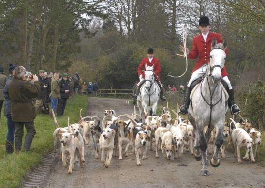 The Thurlow Hunt's Boxing Day meet