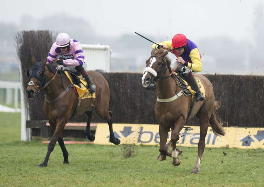 NATIONAL HOPE: Le Mercurey (left, pictured at Newbury) is one of two horses that will represent Mr and Mrs Thompson in the Grand National. PICTURE: Racing Post