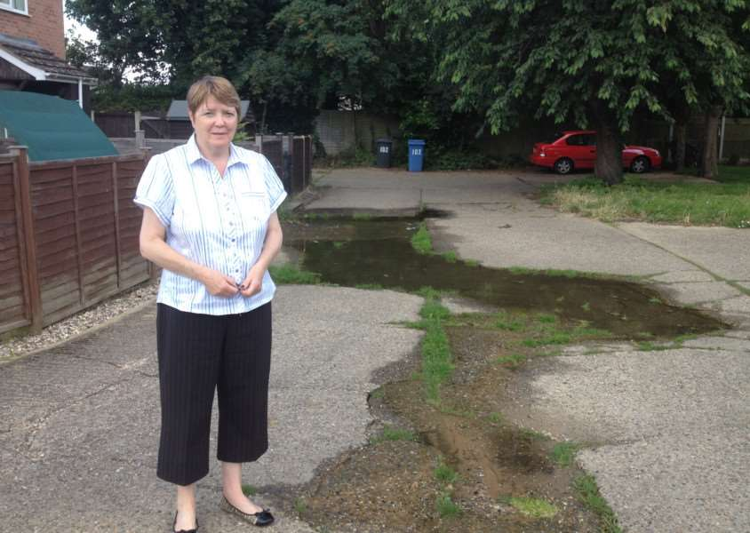 Denise Angel by the flooding in Mallard Way, Great Cornard. ANL-160713-121753001