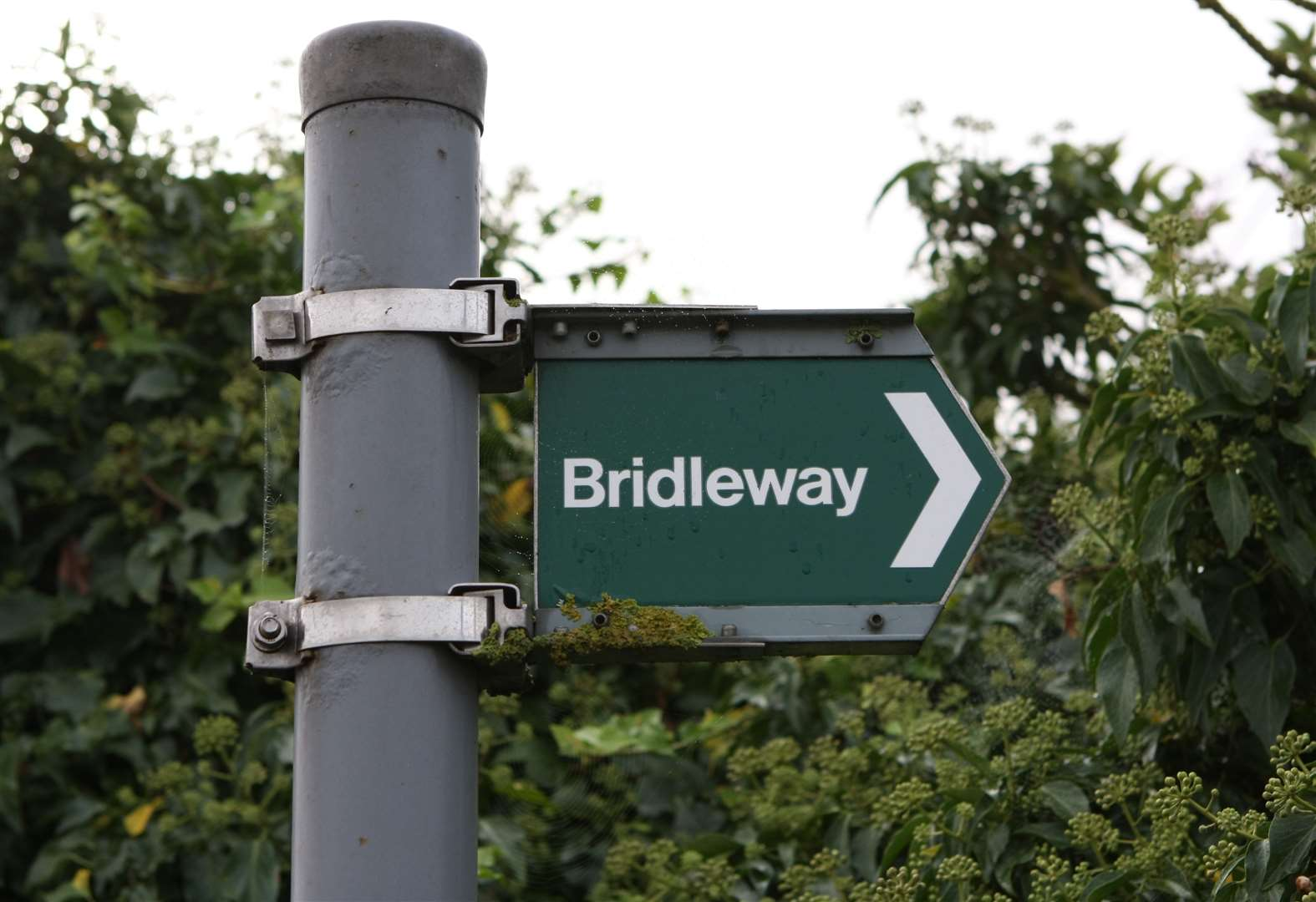 Work on £150,000 project to improve Bury St Edmunds bridleway to start next week