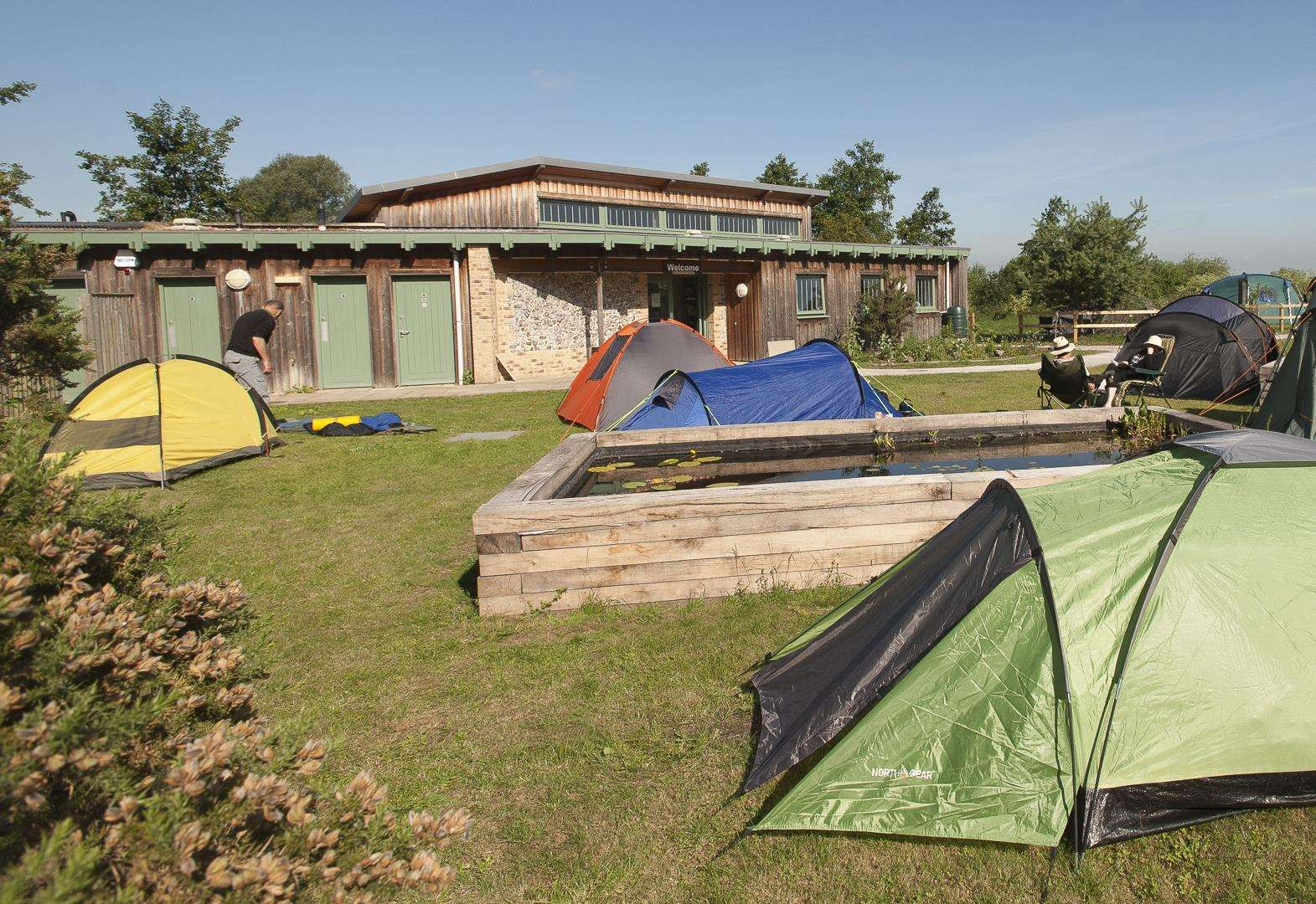 Culture: Camping out under the stars with the RSPB