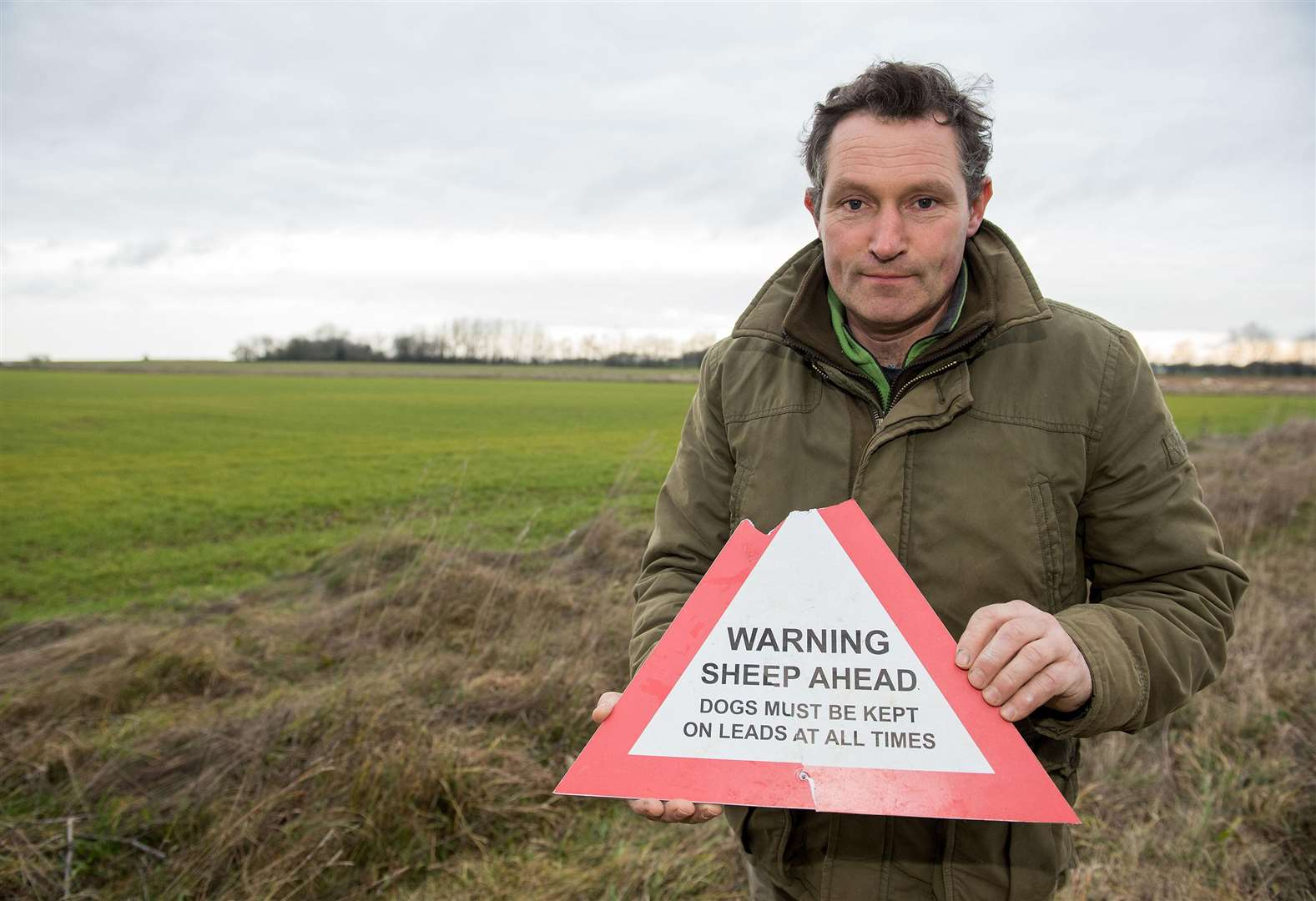 Suffolk Police joins Acton farmer's appeal after dog attacks on sheep