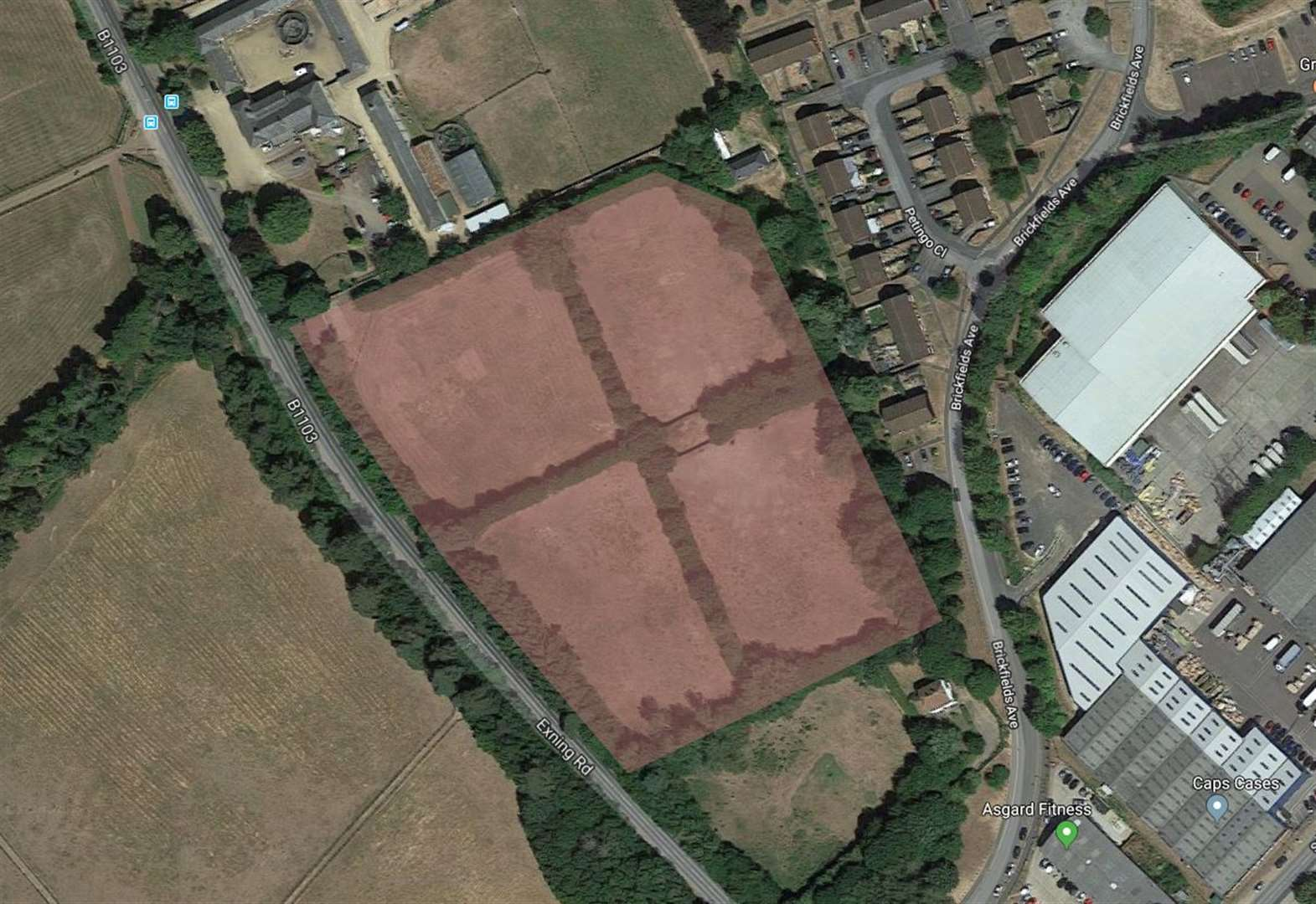 Brickfield Stud estate in Newmarket's Exning Road given go-ahead by council