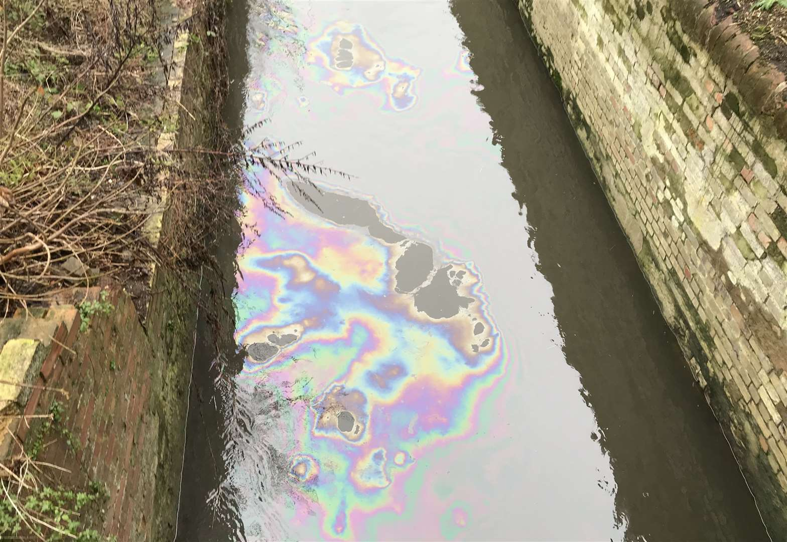Environment Agency and Anglian Water investigate pollution incident in River Lark