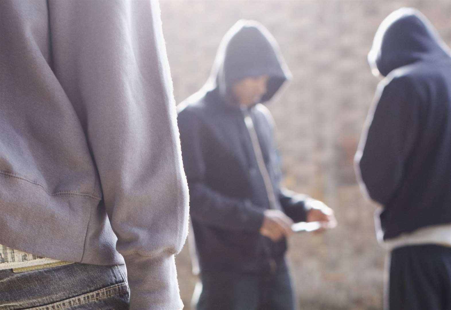 There are between 17 to 25 County Line drug gangs in western Suffolk, council report says