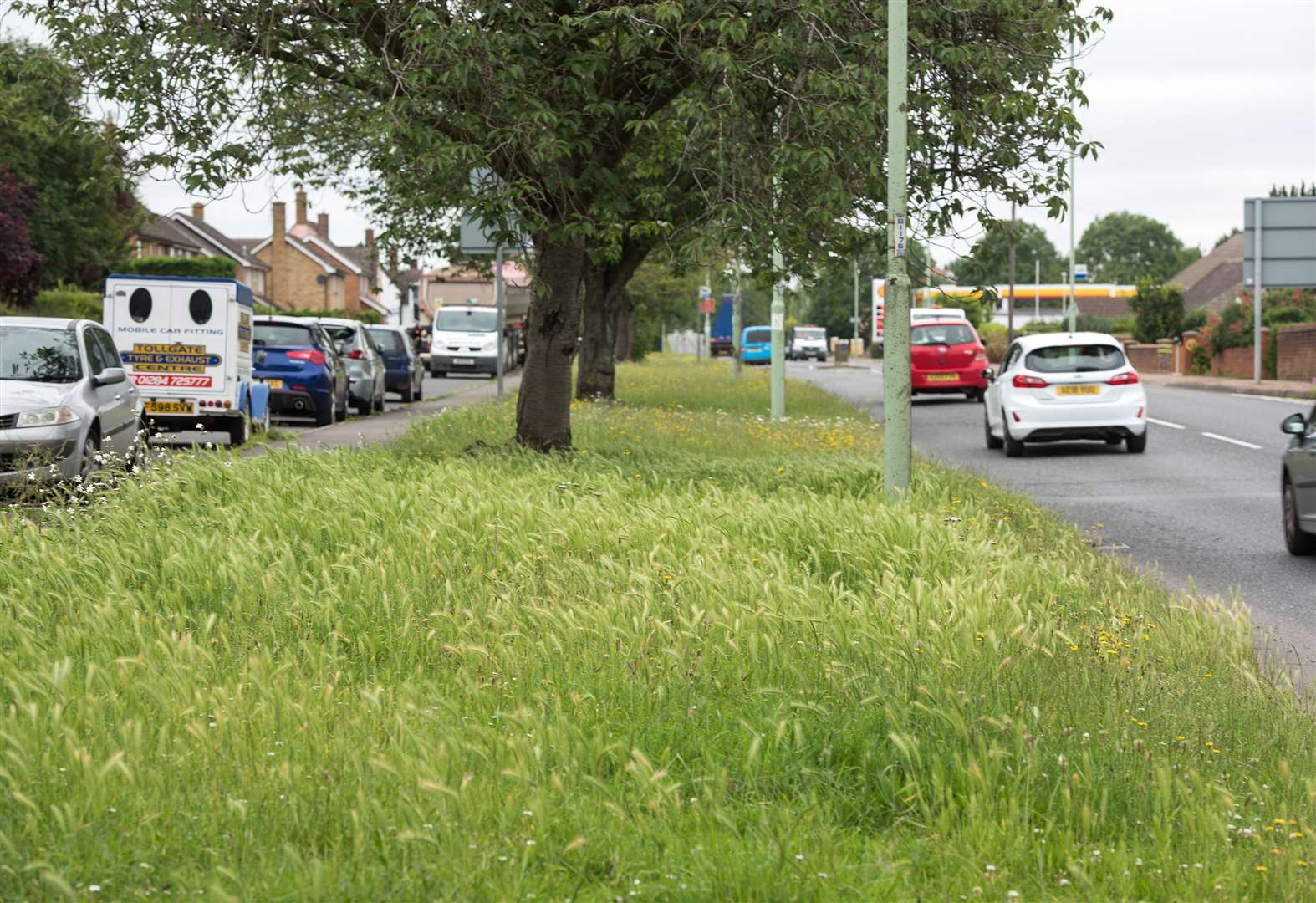 West Suffolk Council accused of mowing grass at businesses as estates are neglected