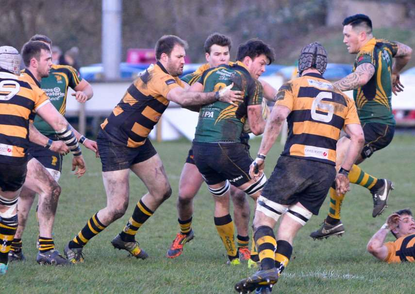 SURROUNDED: There is no way out of a mass of Tring bodies for Bury St Edmunds' Matt Edison during their 42-22 victory at The Haberden on Saturday