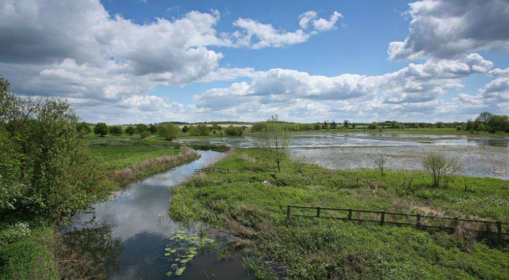 Mickle Mere county wildlife site near Ixworth. Picture: SWT/ Steve Aylward