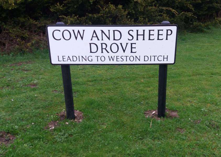 One of the new street name signs at Cow and Sheep Drove or Weston Ditch, West Row, depending on your point of view