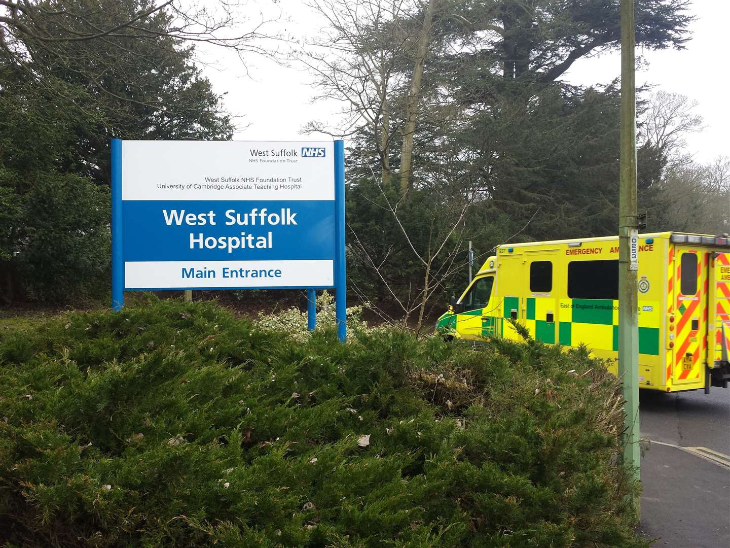 West Suffolk Hospital patient with coronavirus dies