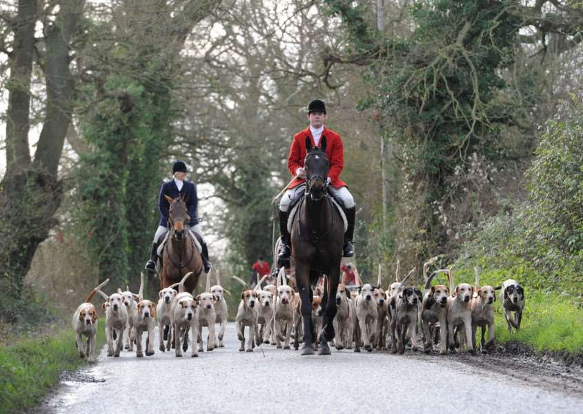 Boxing Day Hunt, Hawstead ANL-151227-172657009