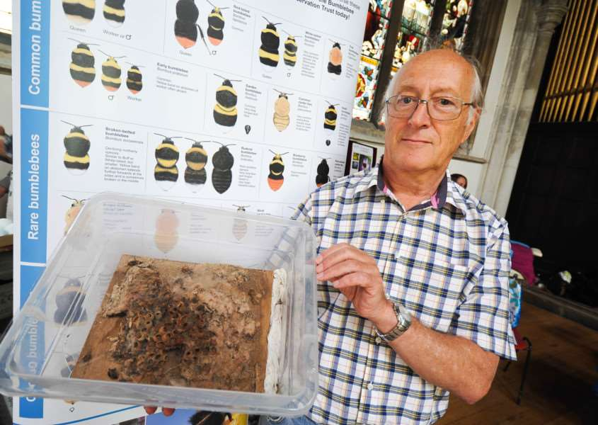 Sudbury hosts its annual Green fair at'St. Peter's Church, Market Hill. FL; Bumblebee Conservationist John Taylor with a Bee's nest. ANL-150308-203753009