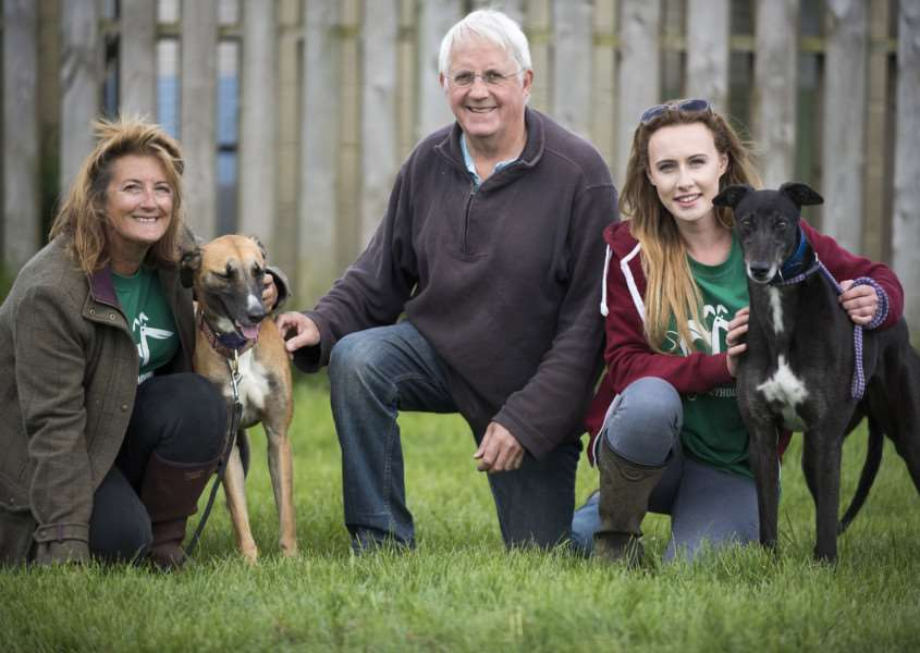 Brookfield Place Kennels are holding an open day owners Peter Whitney and Marion Beere with Kennel manager Becka Murcott with dogs looking for new homes Jasmine, Barney, Tyson, Loui and Macie'Picture Mark Westley ANL-160524-234702009