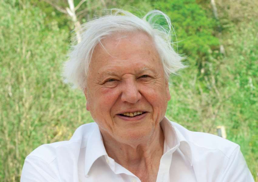 Sir David Attenborough ANL-161028-154815001