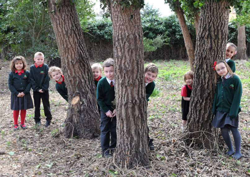 Launch of Forest School site at Forest Academy''Pictured: Pupils in the new area ANL-150324-160601009