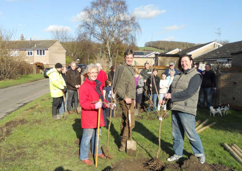 L to R: Enid Bald, Chairman of Linton Parish Council, Rob Mungovan, Ecology Officer at South Cambridgeshire District Council and Beatrice Ward, volunteer Linton Tree Officer. ANL-160222-160755001