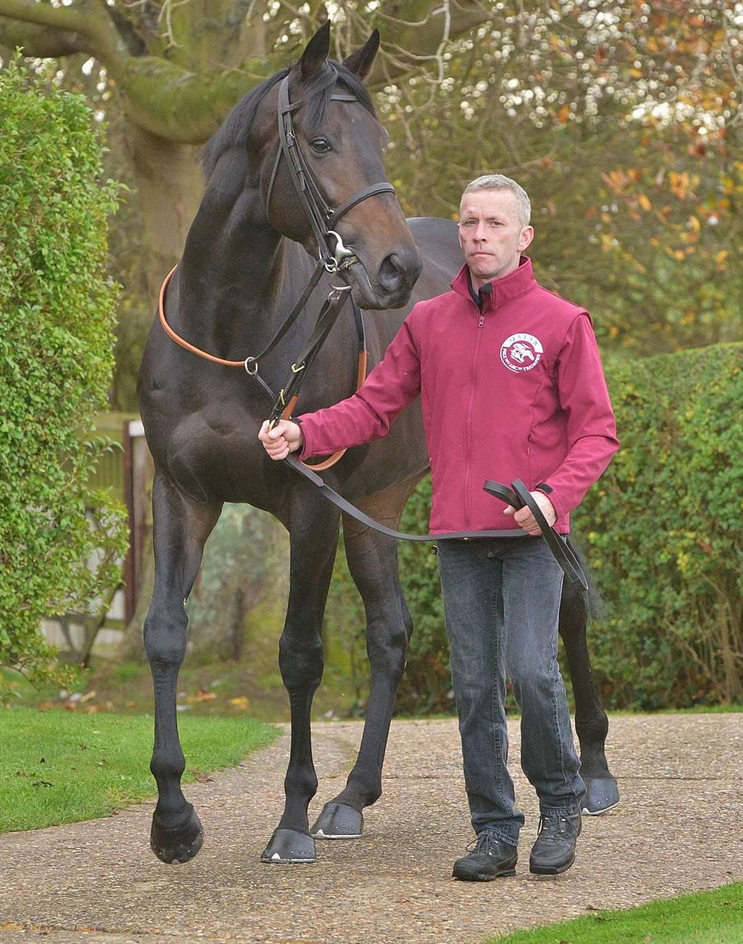 Michael Curran with his 2015 Derby winner Golden Horn.