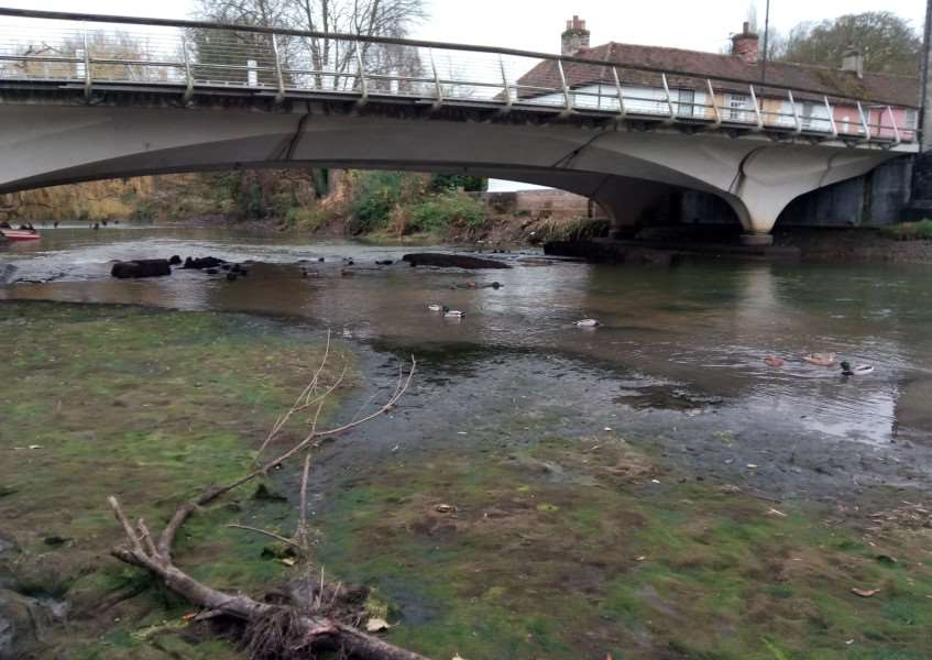 Low river levels on the River Stour due to blockage at Cornard weir ANL-161124-124606001