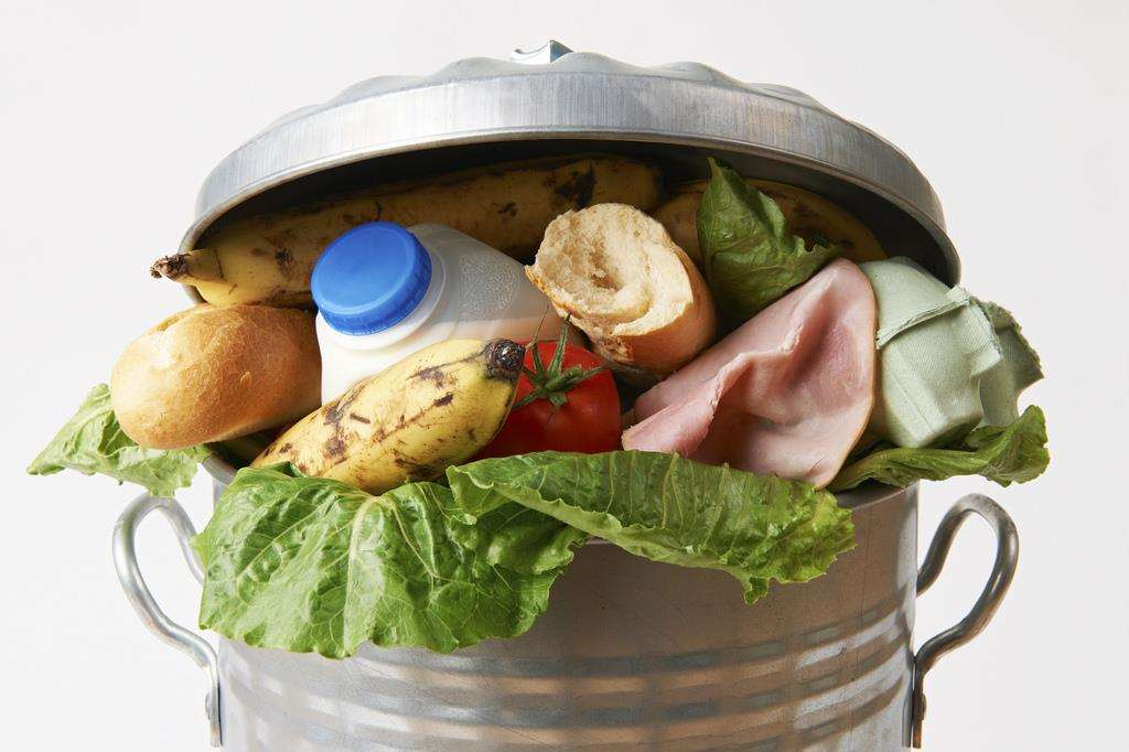 Food waste stock image (6602667)