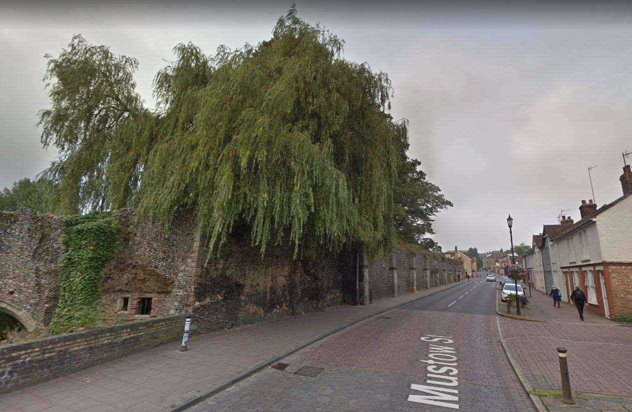 The tree before it collapsed. Picture: Google Maps
