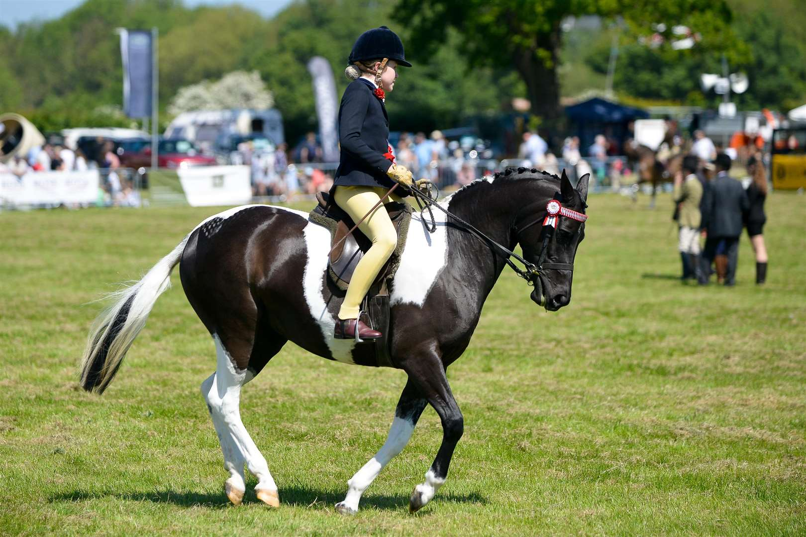 The Annual Hadleigh Show. A entrant in the Dressage Show. (2087989)