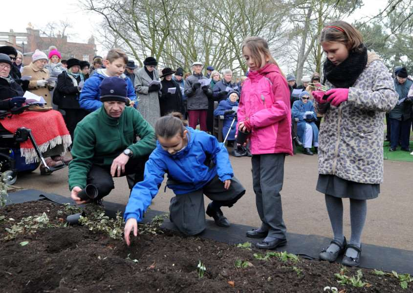 Children from Guildhall Feoffment School plant snowdrops in the Peace Garden in remembrance
