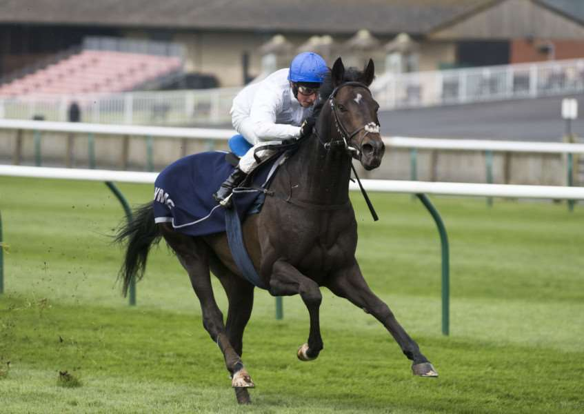 THIRD SPORT: The John Gosden-trained Jack Hobbs, who was third in the Qipco Champion Stakes at Ascot on Saturday