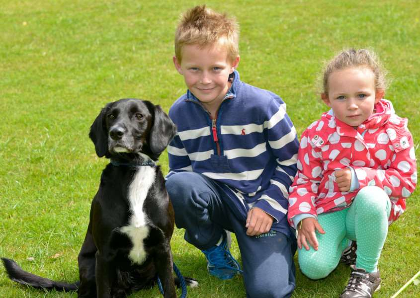 Fun Dog Show at Twinstead Cricket Club. Charlie(10) and Grace(6) Jarvis with their dog Barney a Springer Spaniel. ANL-150726-194906009