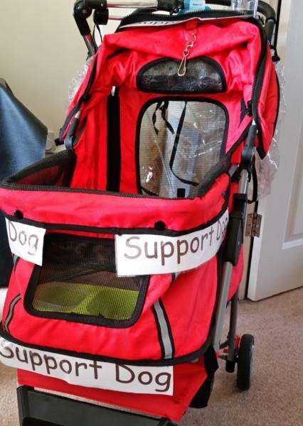Karen Pyke's special carrier for her support dog ANL-151113-155237001