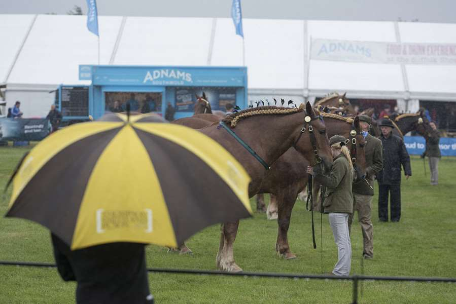 The Suffolk Show 2016 ''Picture Mark Westley ANL-160106-113440001