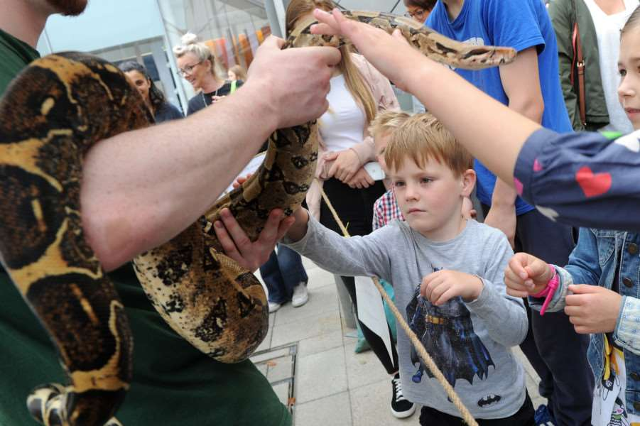 Five-year-old Cooper Flurrie with Anastasia, a red-tailed boa constrictor