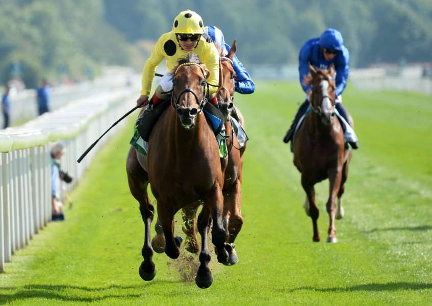WINNING STREAK: Andrea Atzeni rides Postponed to victory in the Juddmonte International at York. It was the sixth win in a row for the Roger Varian-trained five-year-old, who is now tipped for the Prix de l'Arc de Triomphe