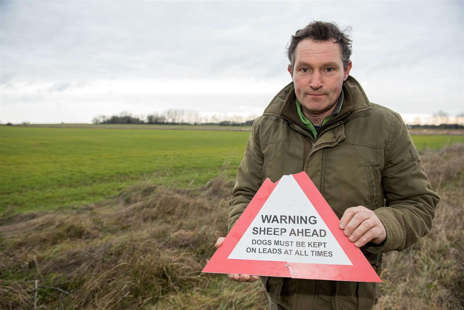 ACTON: Dog attack at farm..Acton farmer Jamie Gregory is urgently appealing for dog walkers to keep their pets on a leash when near livestock, after one of his sheep was seriously injured after being attacked by a dog that had gotten onto his farmland. Picture by Mark Westley. (6536948)