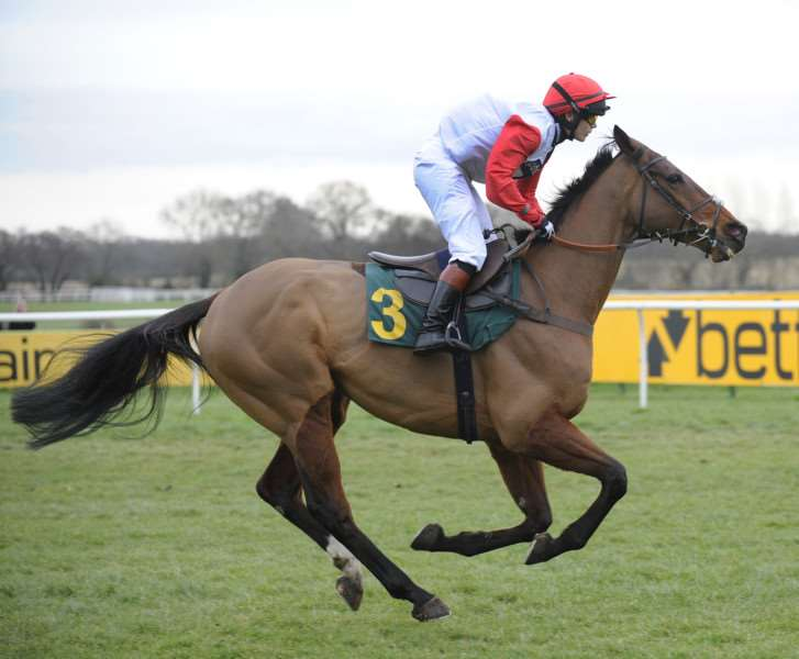 Fakenham Races, Victoria Pendleton taking part in the Betfair Switching Saddles Grassroots Fox Hunters Chase at 4.10 'Wearing Red/White/Black ANL-160220-091911009