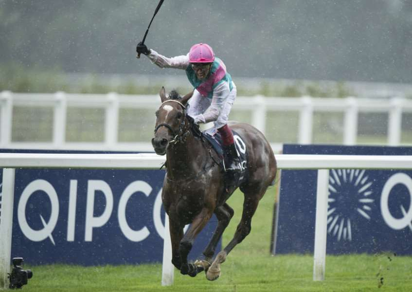 EUROPEAN CHAMP: Enable stormed to victory in The Arc. Picture: Racing Post