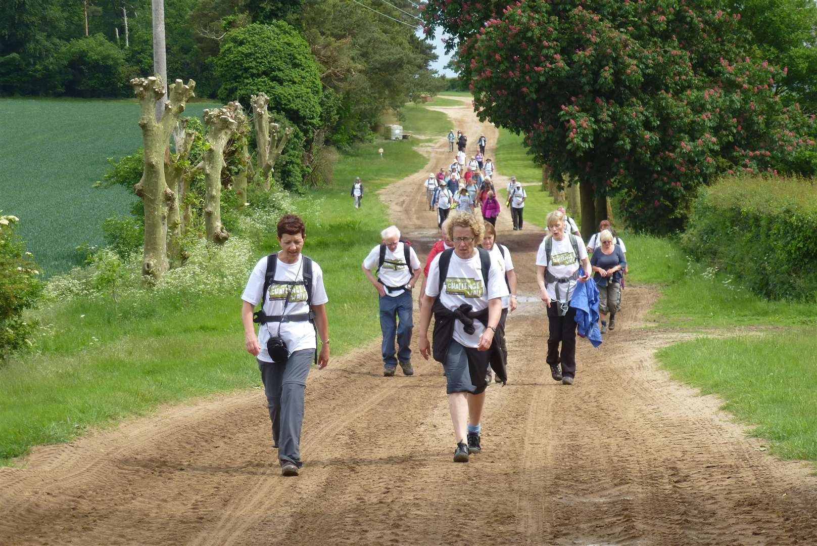suffolk walking festiva - previous event (9026604)