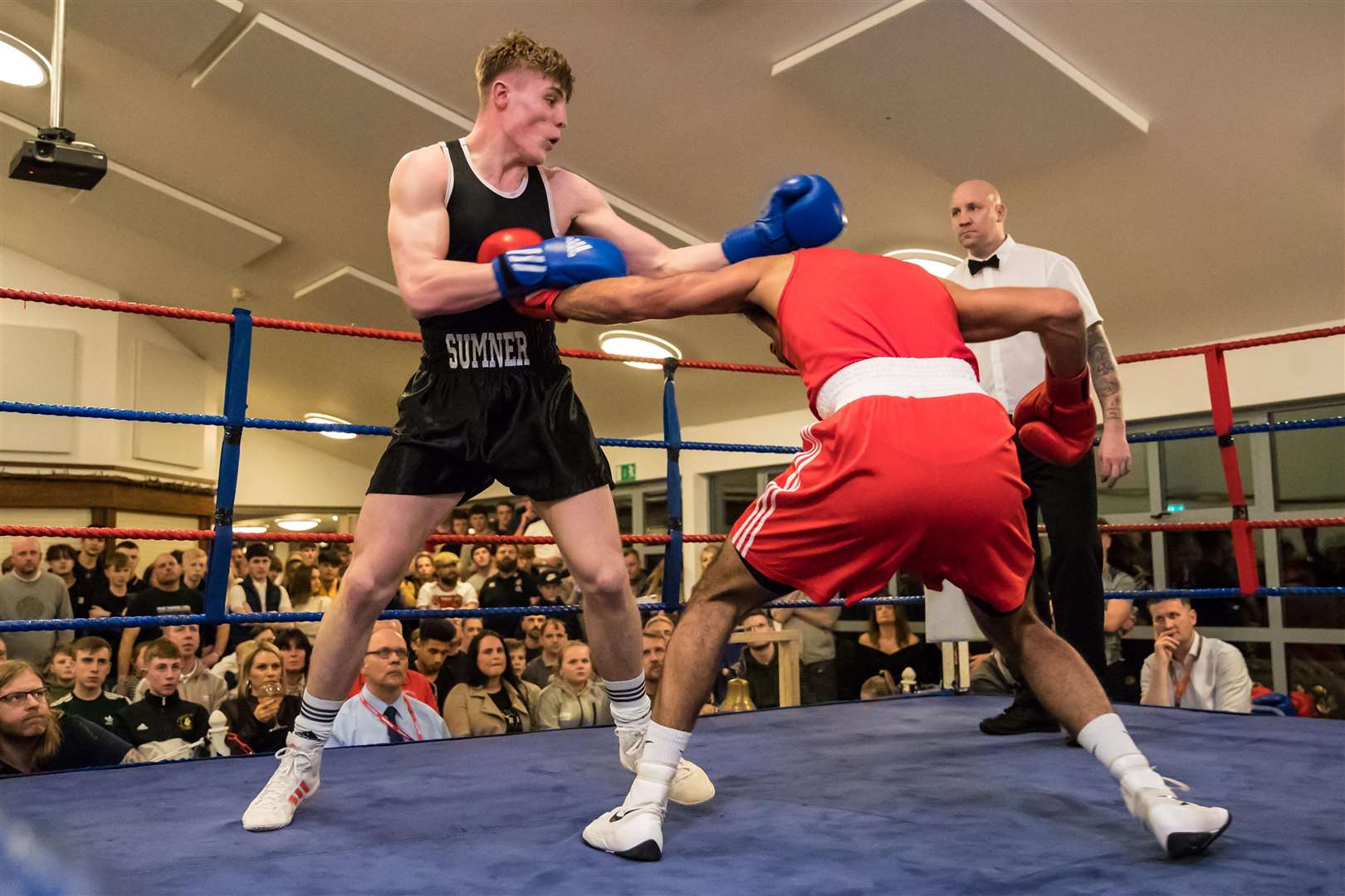 Sudbury ABC Home Show. Bout 14 - Light Heavy Weight - (Red) Balraj Khara (Westside) v (Sudbury) Jake Sumner (Blue).Winner - Jake Sumner - RSC. Picture Paul Tebbutt. (7445663)