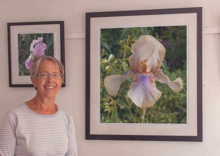 Sarah Cook beside Clare Dawson's photograph of one of her Cedric Morris irises