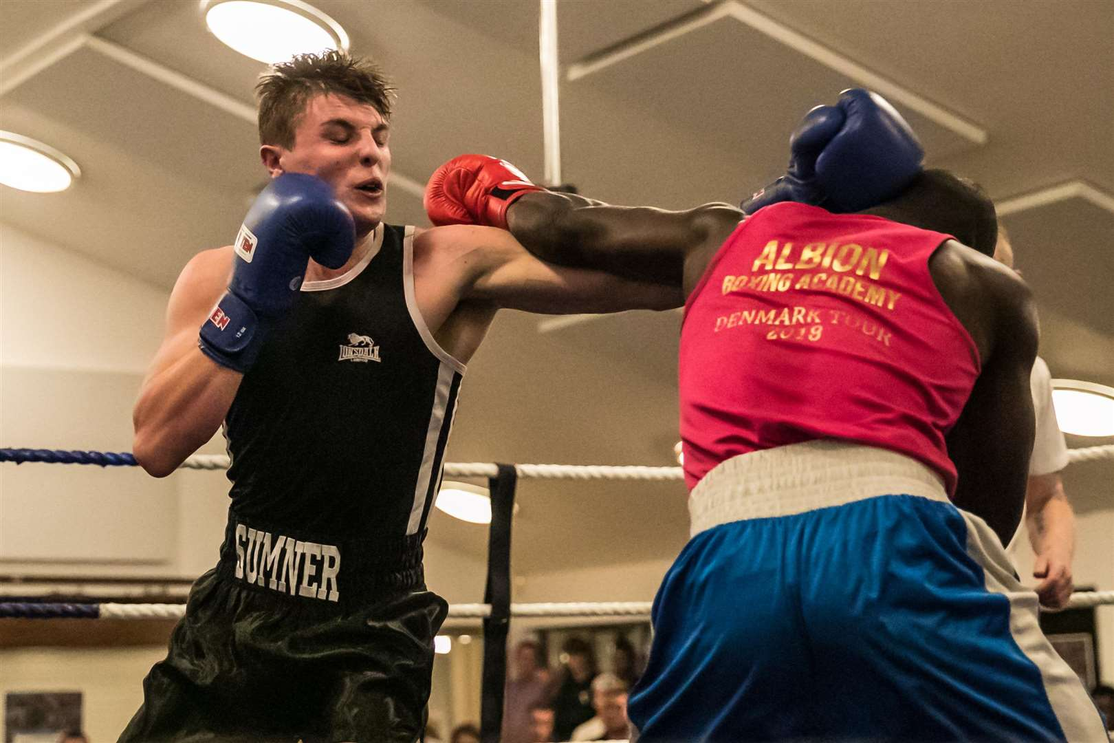 Boxing - Sudbury ABC Home Show. Pictured Jake Summer, Bout 20 - (Red) Gianni Antoh (Albion) v (Sudbury) Jake Summer (Blue) Picture - Paul Tebbutt. (4927071)