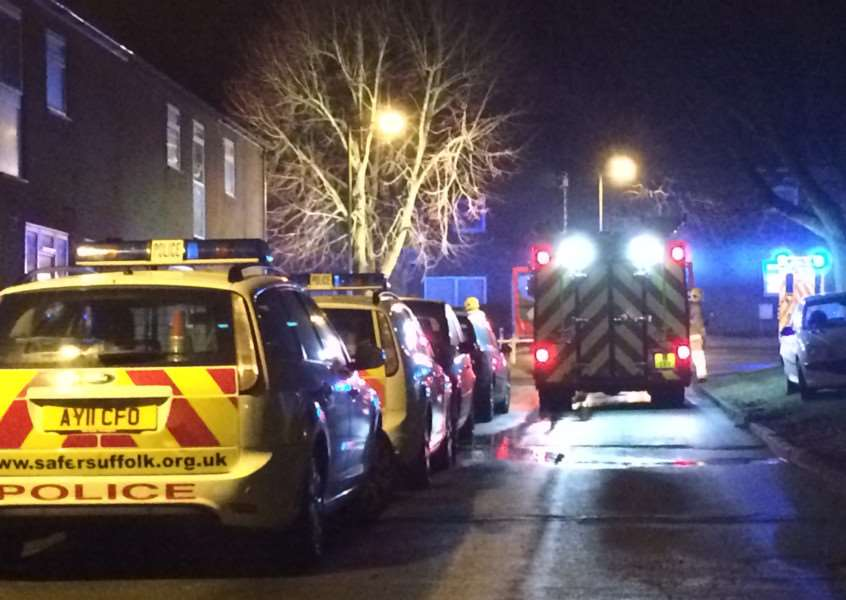 A fire engine and police cars outside the house in The Keep where a fire broke out ANL-151003-131104001
