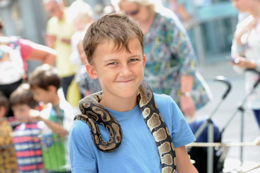 Eight-year-old Christian Johnson with Shere Khan, a royal python