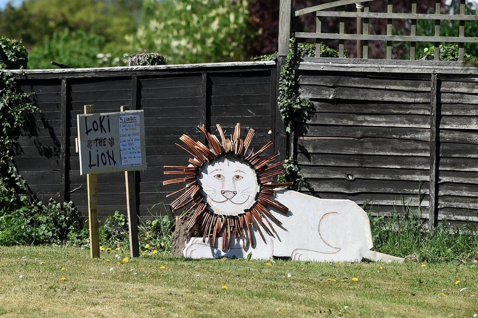 Acton Primary School teacher Katy Hammond has organised a zoo trail involving 60 households in Acton, which has encouraged children to create their own displays about animals for people to enjoy while walking in the village....PICTURE: Mecha Morton .... (34023154)