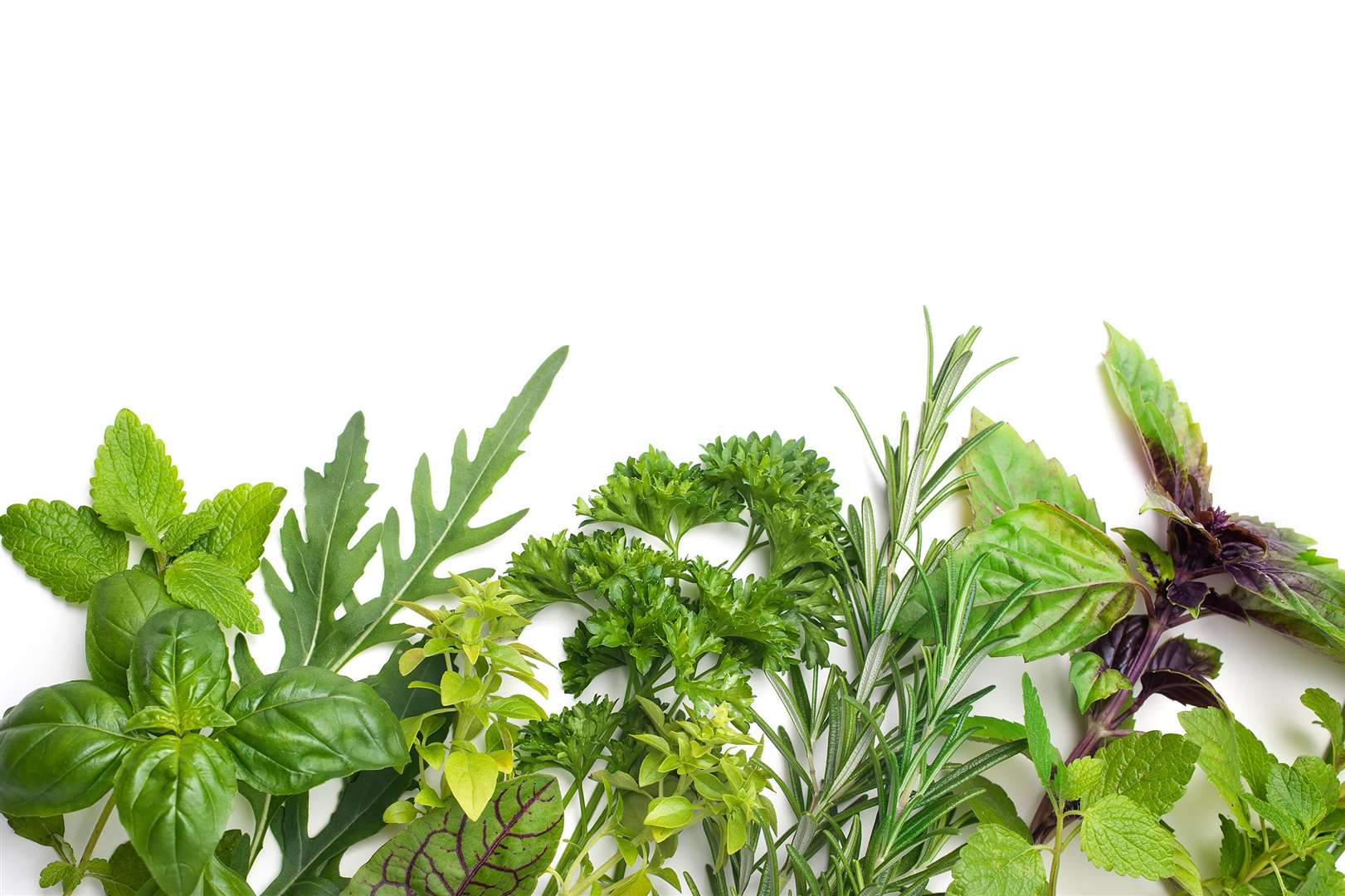 Fresh kitchen herbs isolated on white background (3647037)