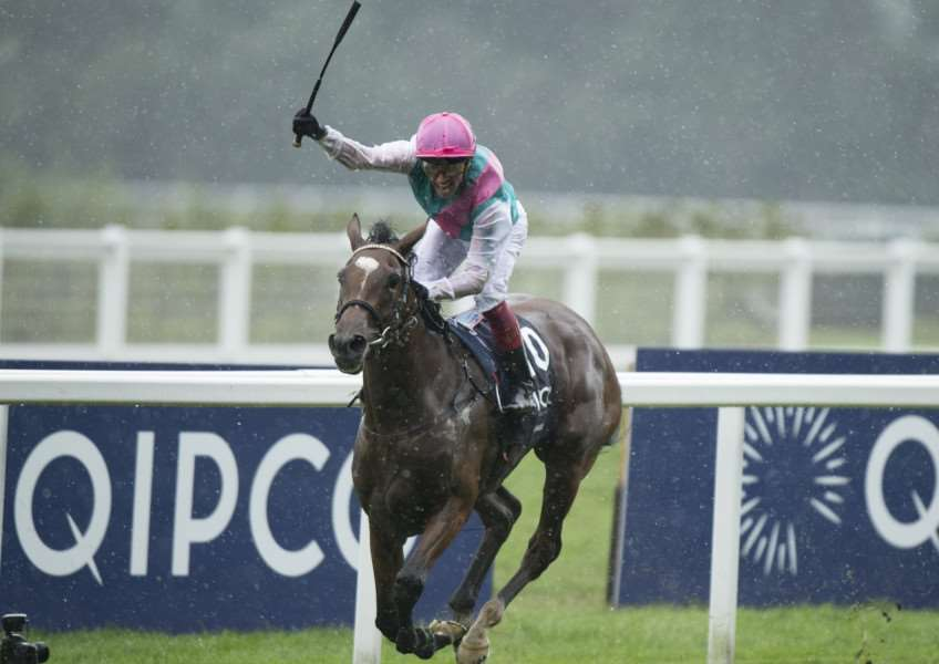 COMING BACK: Enable. Picture: Racing Post