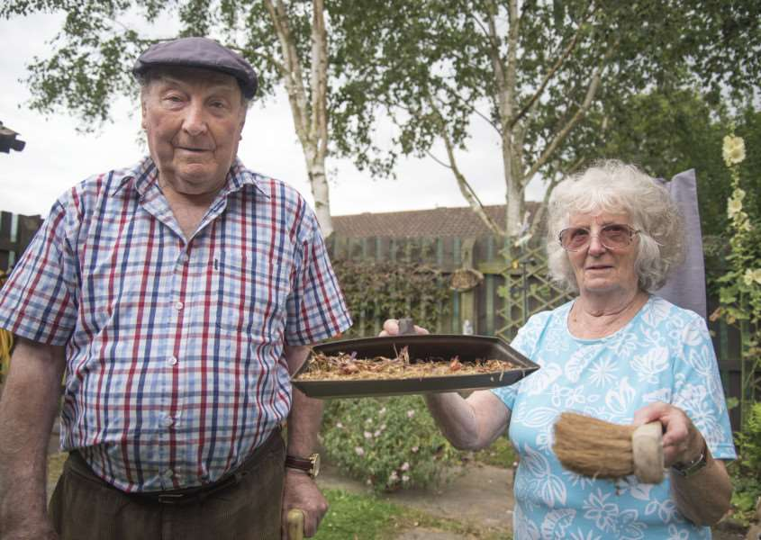 Stanley and Tessa Watts by the Silver Birch trees causing them problems. Picture Mark Westley ANL-160726-221415009