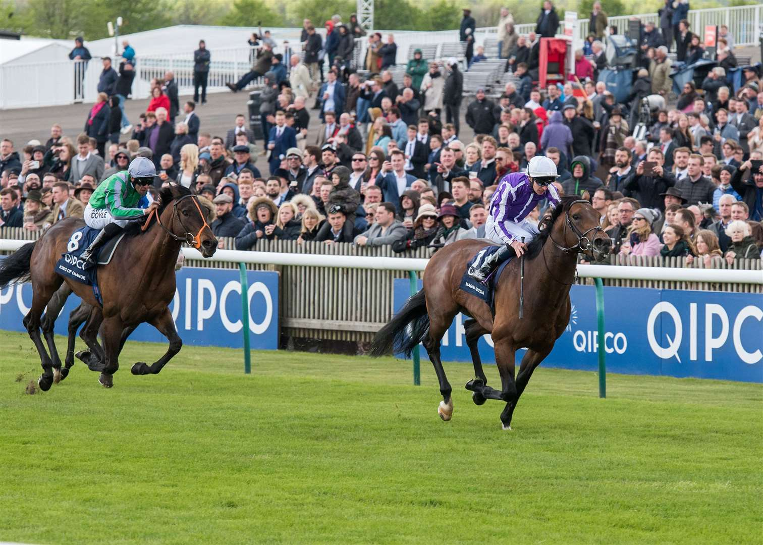 2000 Guineas day at Newmarket Rowley Mile Qipco 2000 Guineas Stakes (Group 1) (British Champions Series) (Colts & Fillies).10. Magna Grecia.Winning jockey: Donnacha O'Brien.Winning trainer: A P O'Brien Picture by Mark Westley. (9793062)