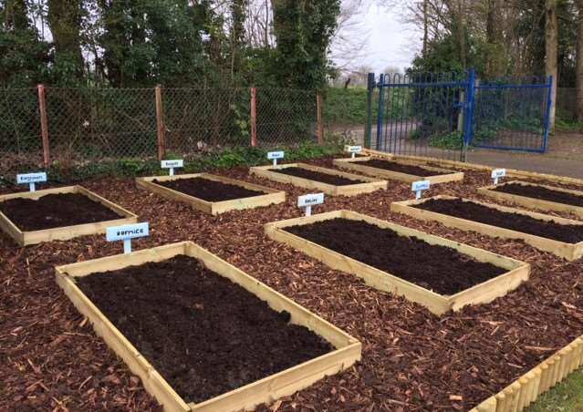 Glemsford Primary School's new gardening plots for each class. ANL-160420-143144001