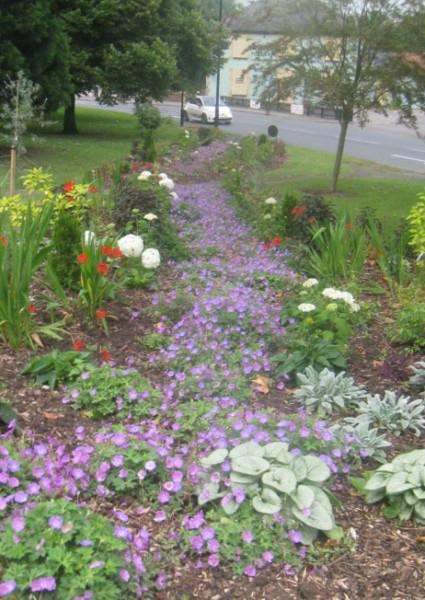 The River of Flowers on Tollgate Triangle
