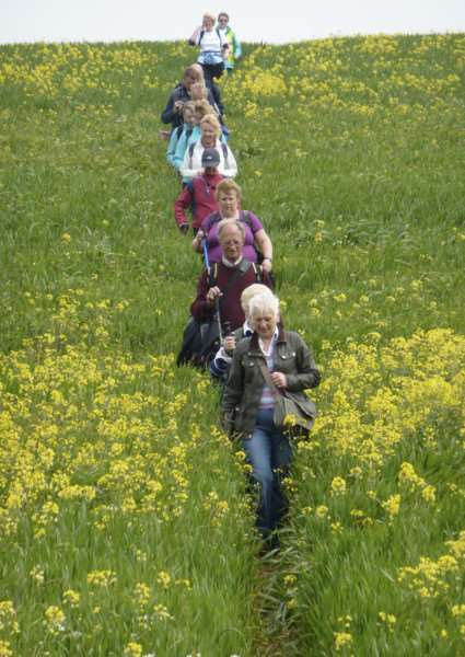 suffolk walking festival image from previous year ANL-160430-224255001