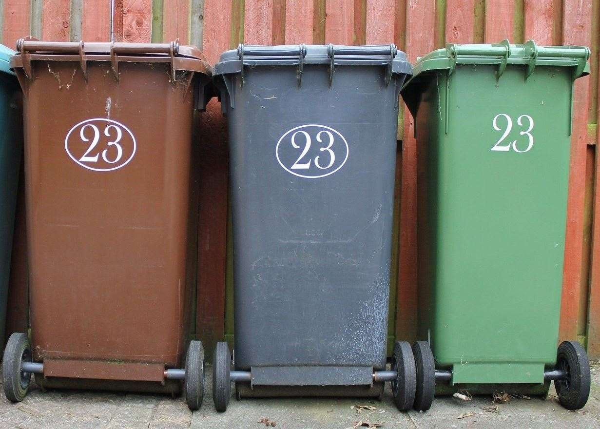Bin collections could change